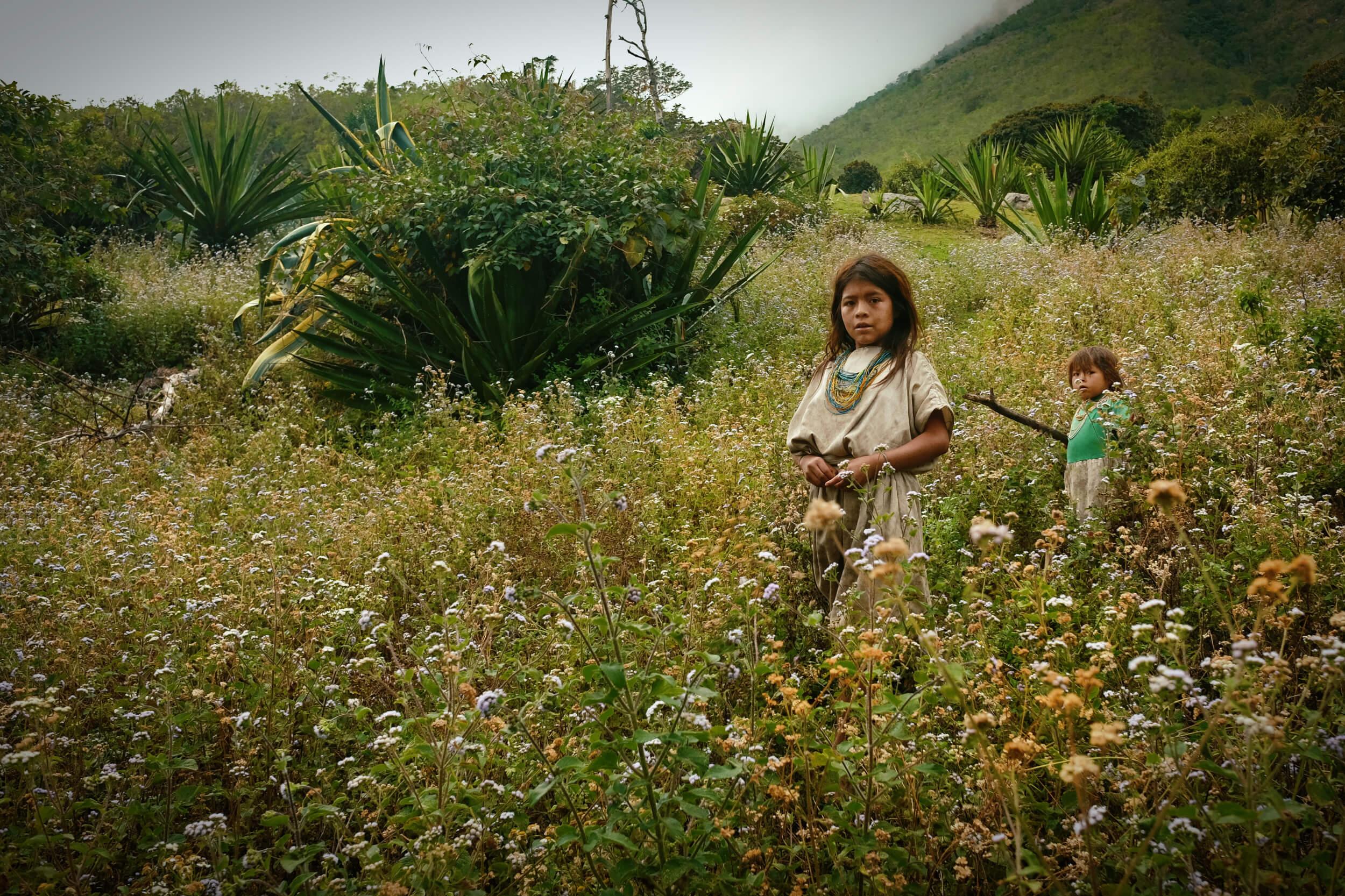 arhuaco children in a meadow of flowers
